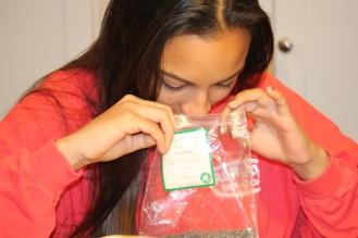 Jade smelling lavendar